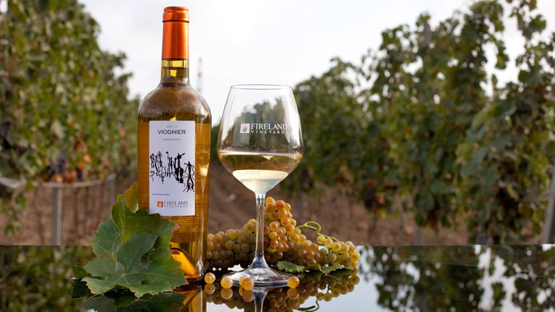 wine-tour-baku-13